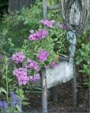 floralthrone