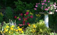 gardensecret.barbbowman