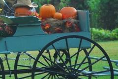 pumpkin_ride