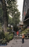 paris-street-scene-1