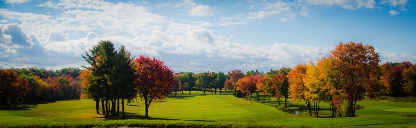 golf course web